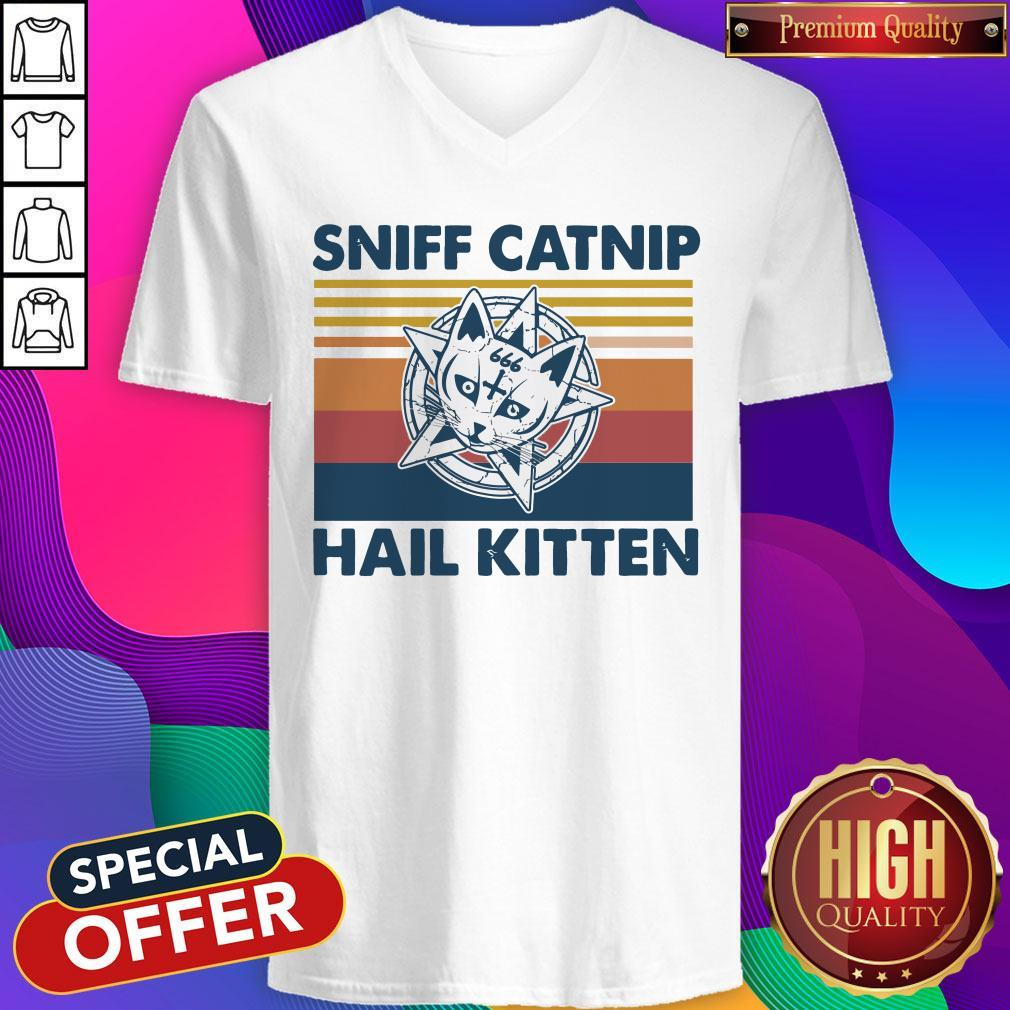 Awesome Sniff Catnip Hail Kitten Vintage V-neck
