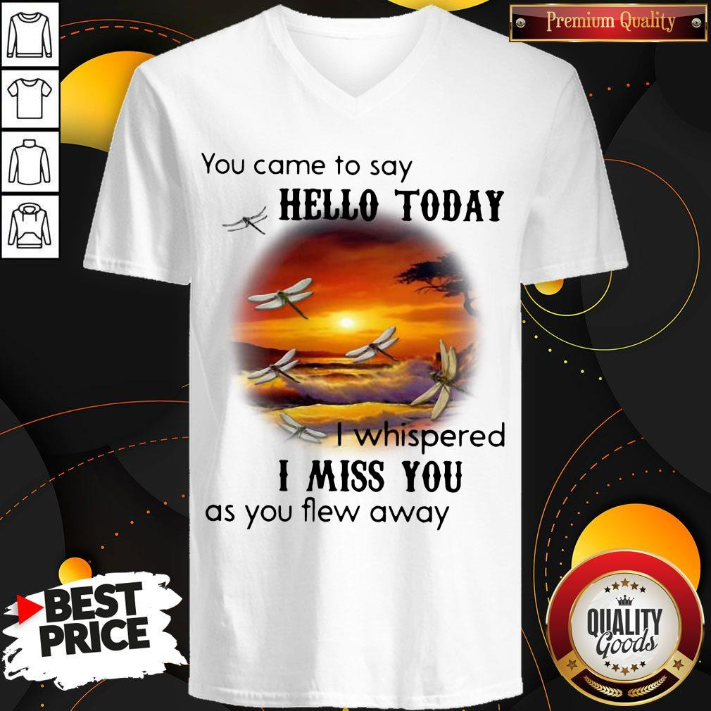 You Came To Say Hello Today I Whispered I Miss You As You Flew Away V-neck