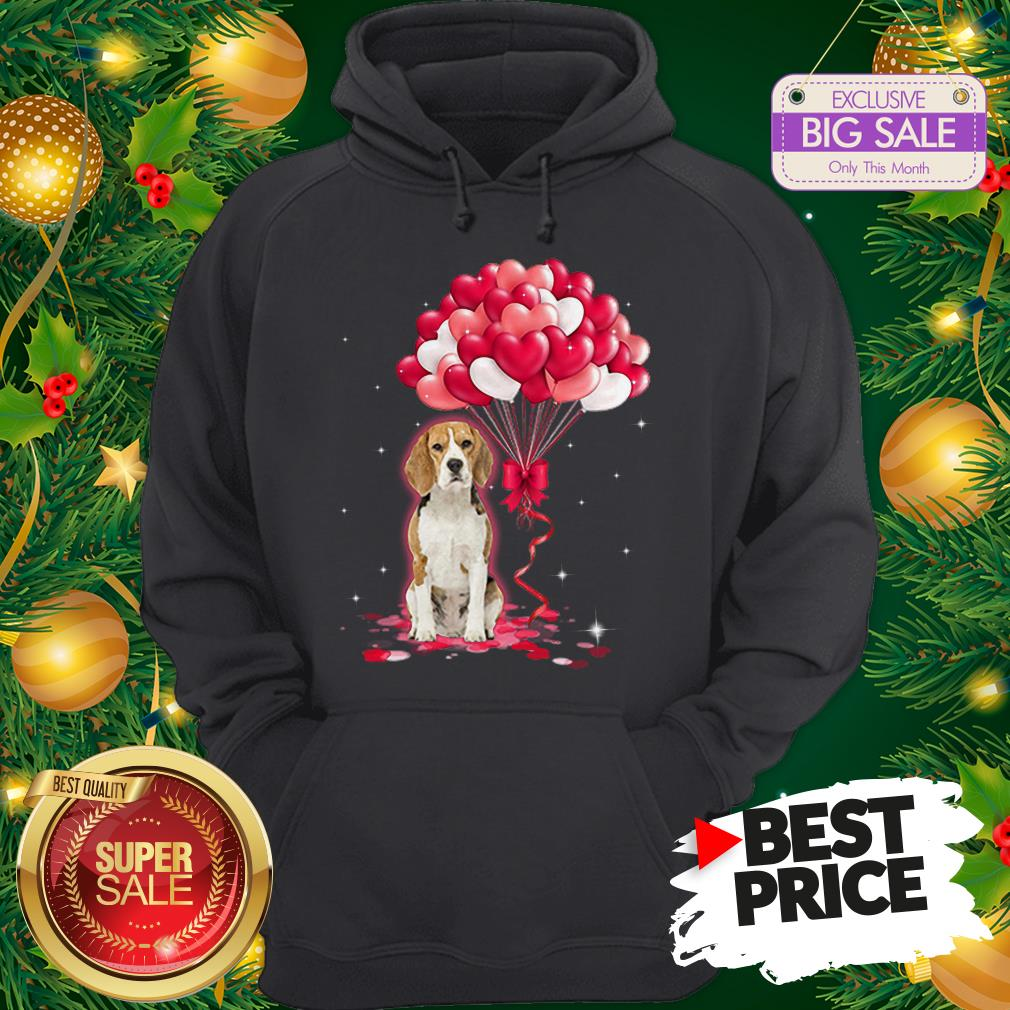Wonderful Beagle Dog Love Balloons Heart Hoodie