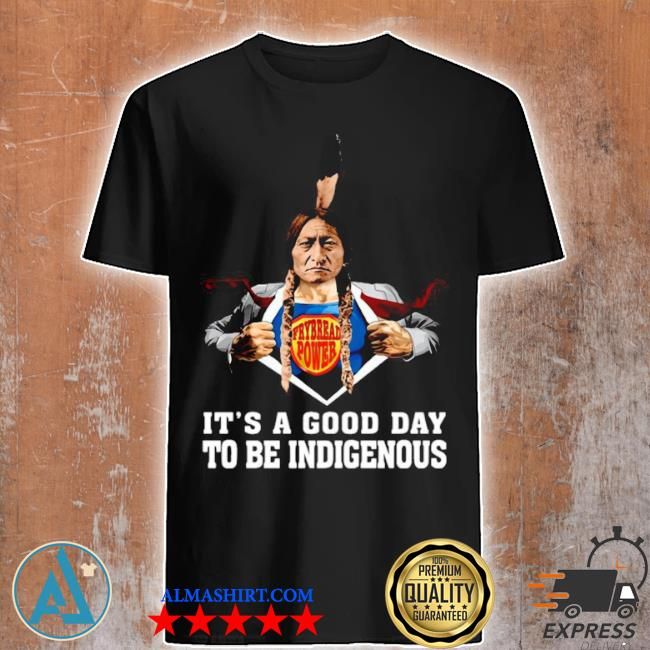 Its a good day to be indigenous shirt